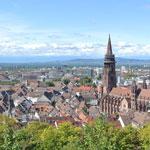 Programas de alemán para adultos